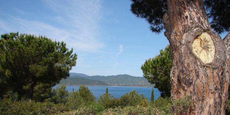 angelo_zisa_toscana_mare_isola-di-elba
