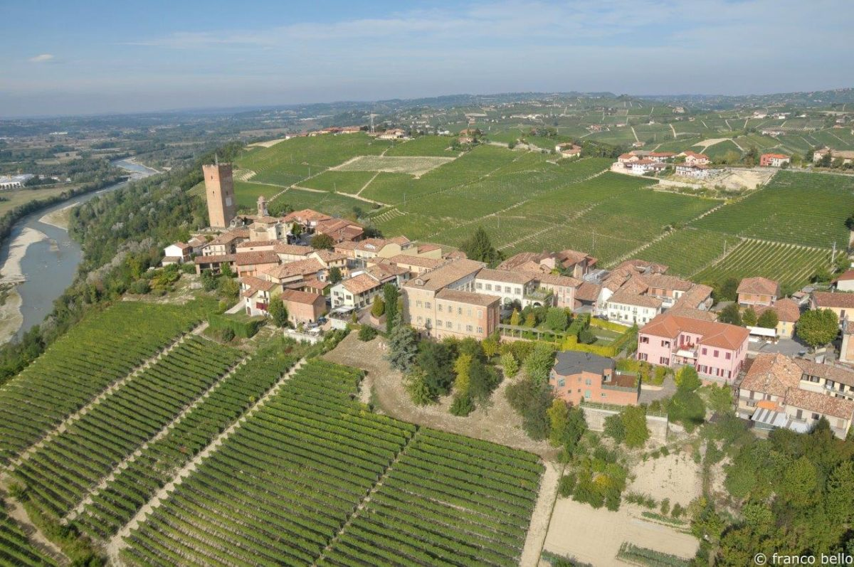 bello_franco_barbaresco_vigne