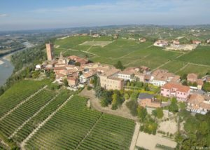 bello_franco_barbaresco_vigne