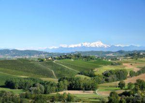 bello_franco_vigneti_montagne