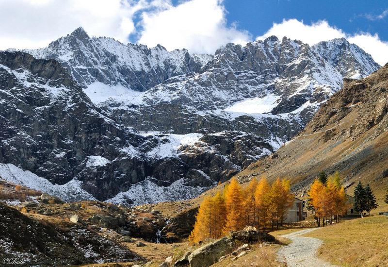debora_branda_pian_della_regina_montagne