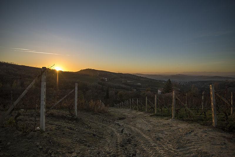 hohler_nicola_tramonto_su_langhe_2